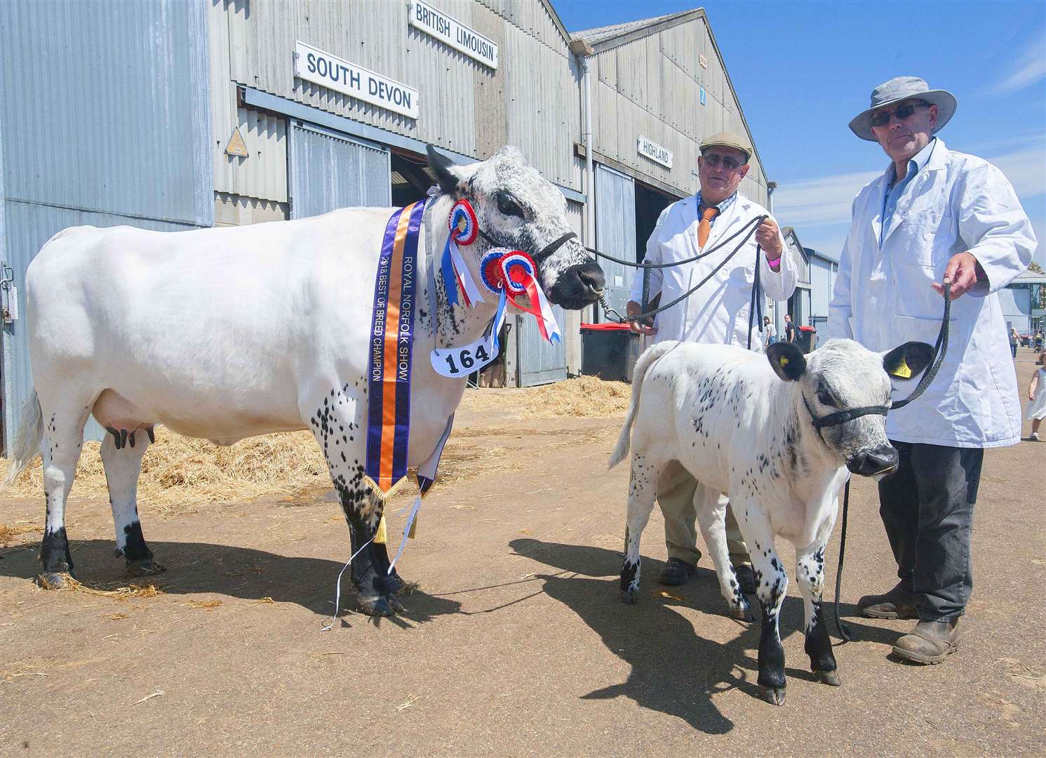 The Royal Norfolk Show Pictured Prize Winner on the Lerft Clive Delamore. with (Bulby-Jasmin) Keith Harding with (Leverigton-Evita). (2788478)
