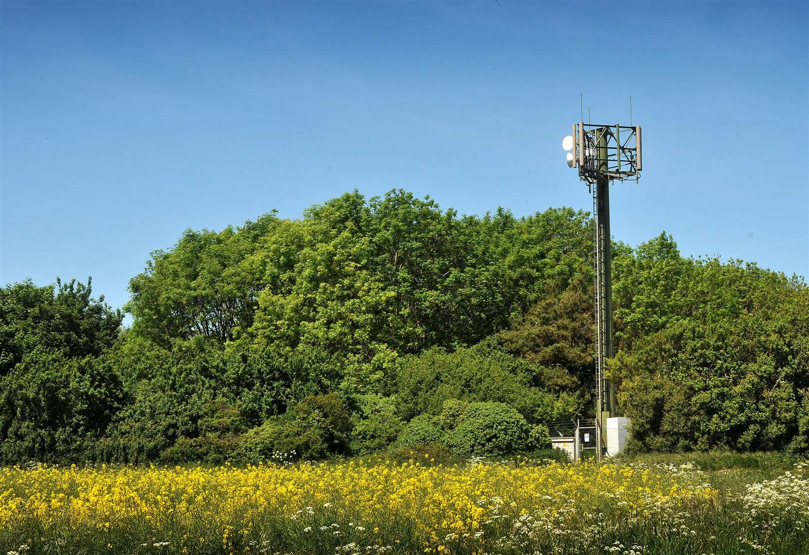 More than half of West Norfolk still without 4G phone coverage, says new report