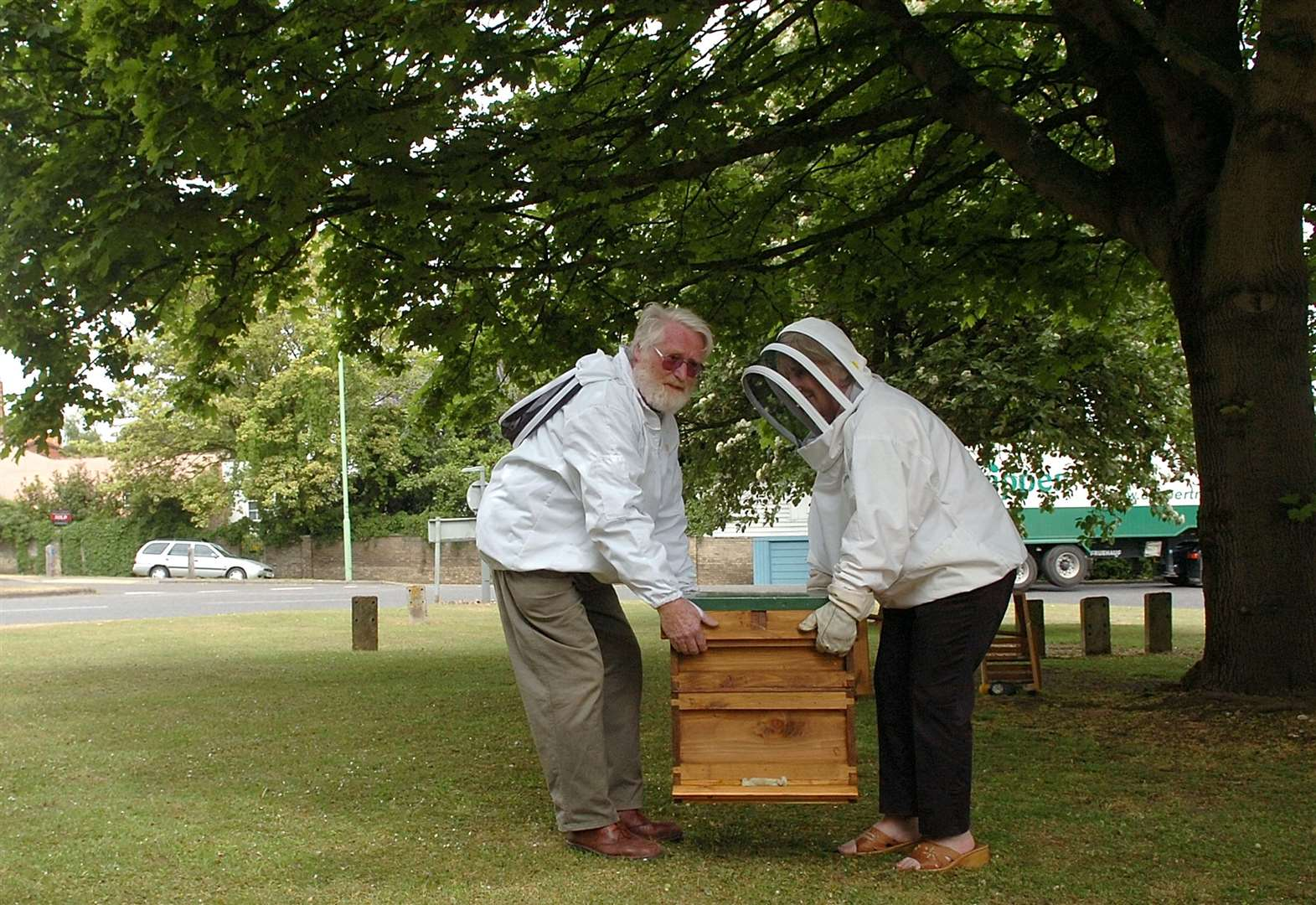 Warning over threats to West Norfolk bee populations