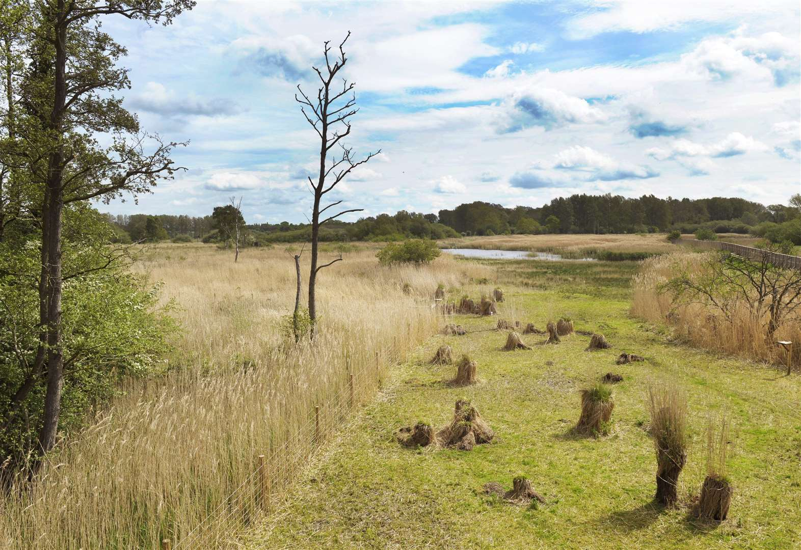 Sculthorpe nature reserve scoops £820k Heritage Lottery grant