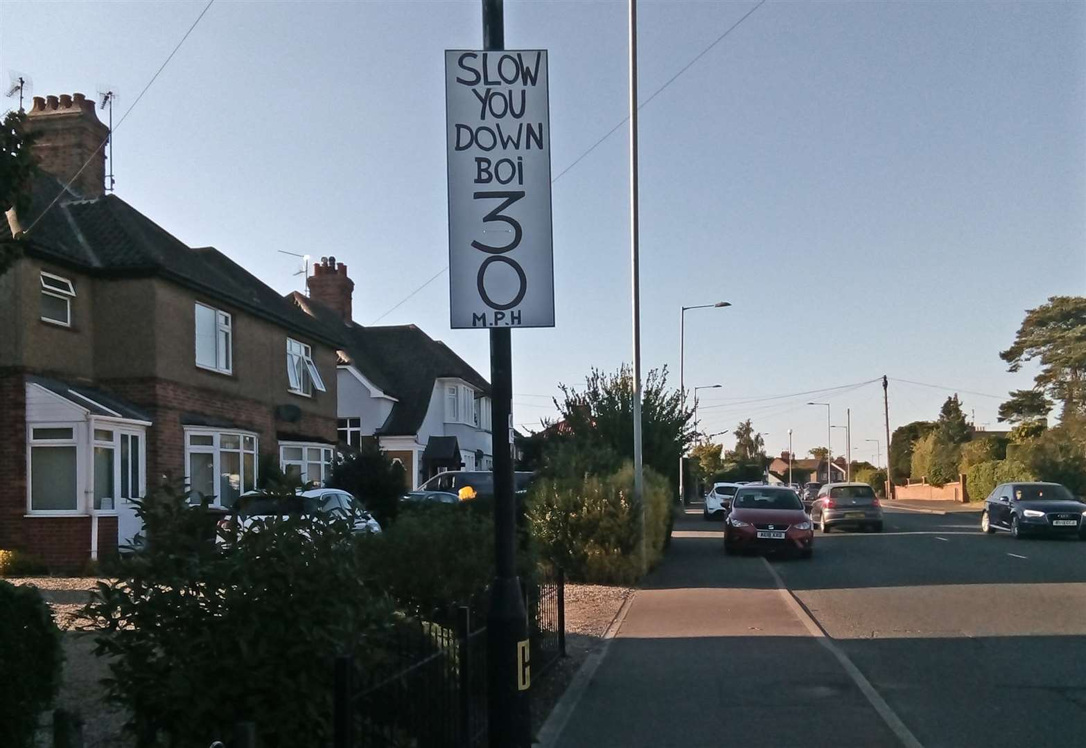 Home-made 30mph sign on main King's Lynn route spells out message