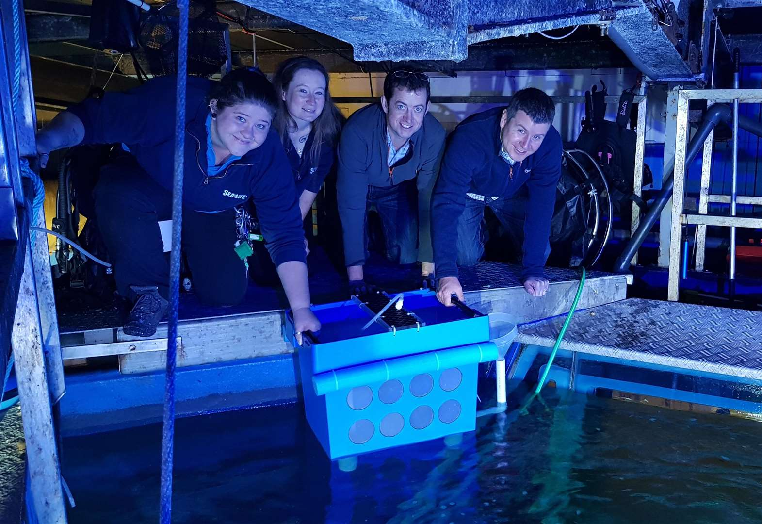 Pioneering new breeding project to use fish eggs from Hunstanton Sea Life Centre