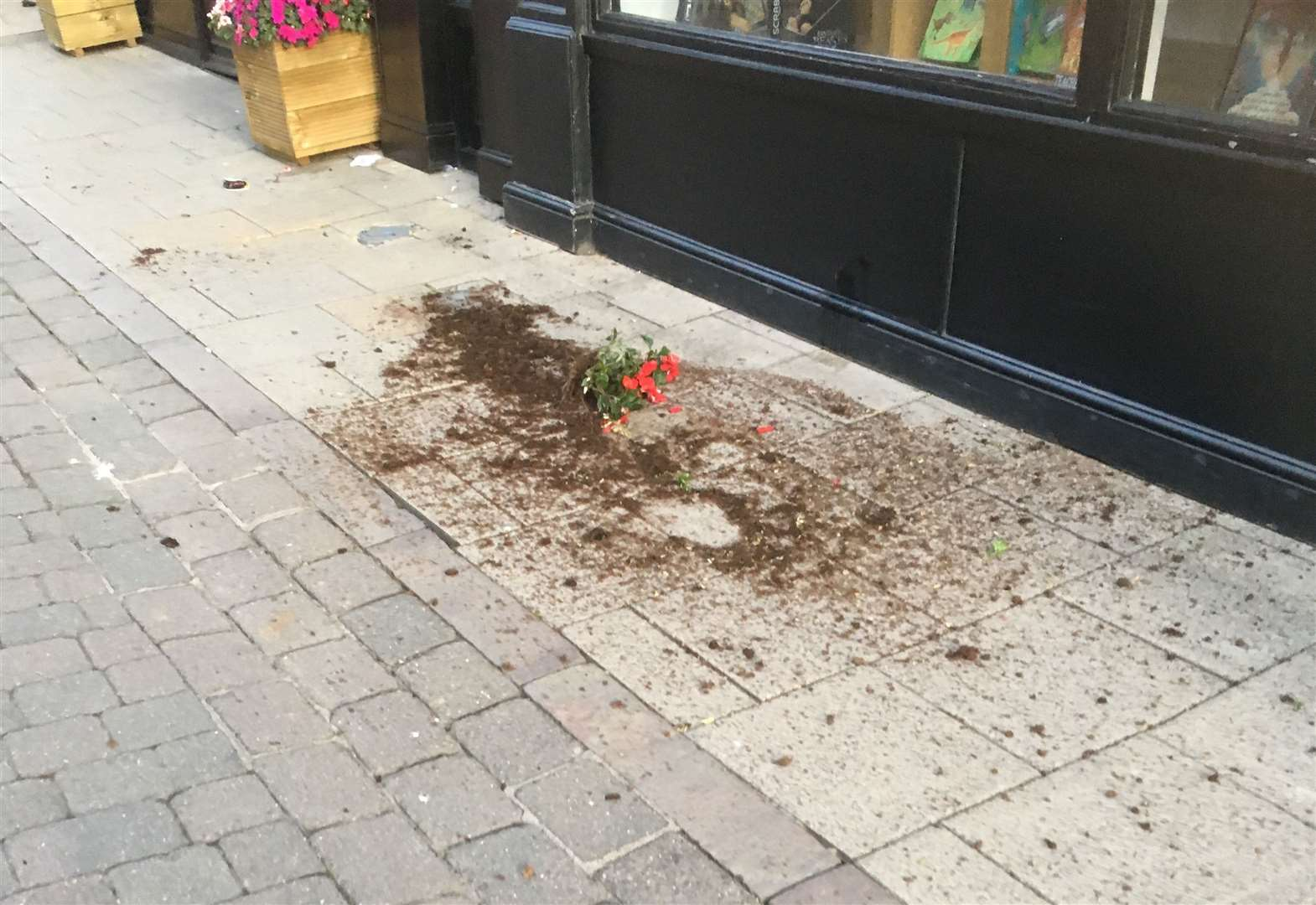 Positive feedback for planters despite acts of vandalism