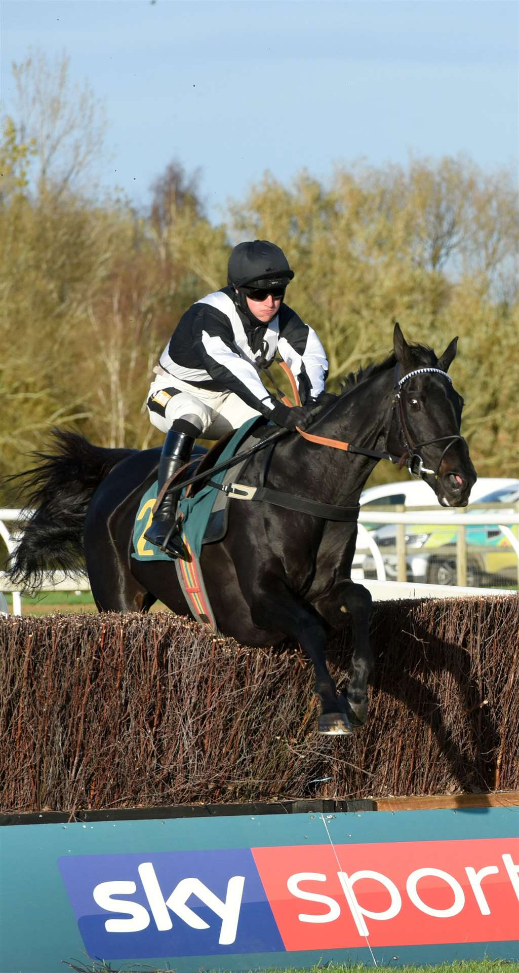 Racing Action at Fakenham Racecourse on Wednesday 28th October 2020..Action from Race No 5. (42906514)