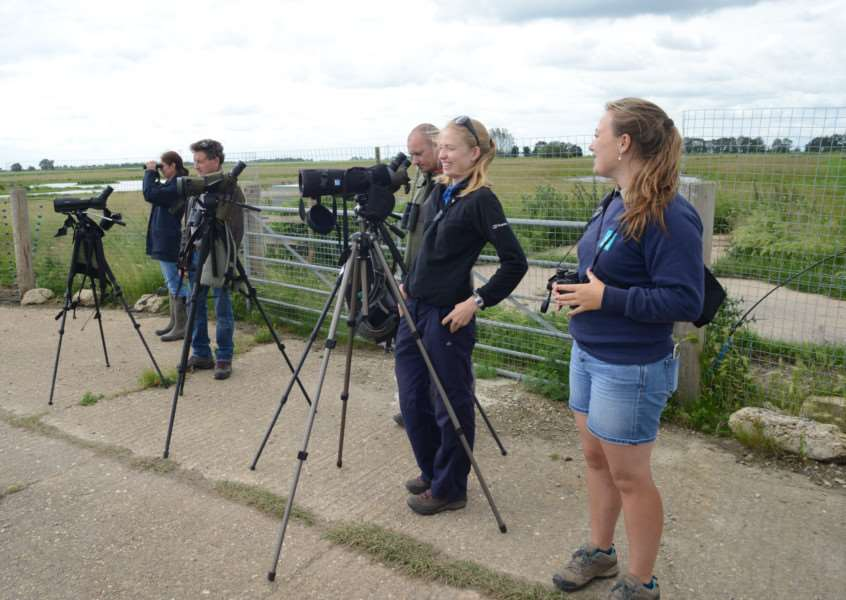 Project Godwit team watching the release (c) Bob Ellis WWT.JPG
