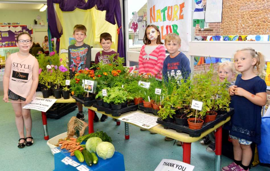 HEACHAM INFANT SCHOOL SUMMER FETE'Nature Club members offer their own grown wares for sale