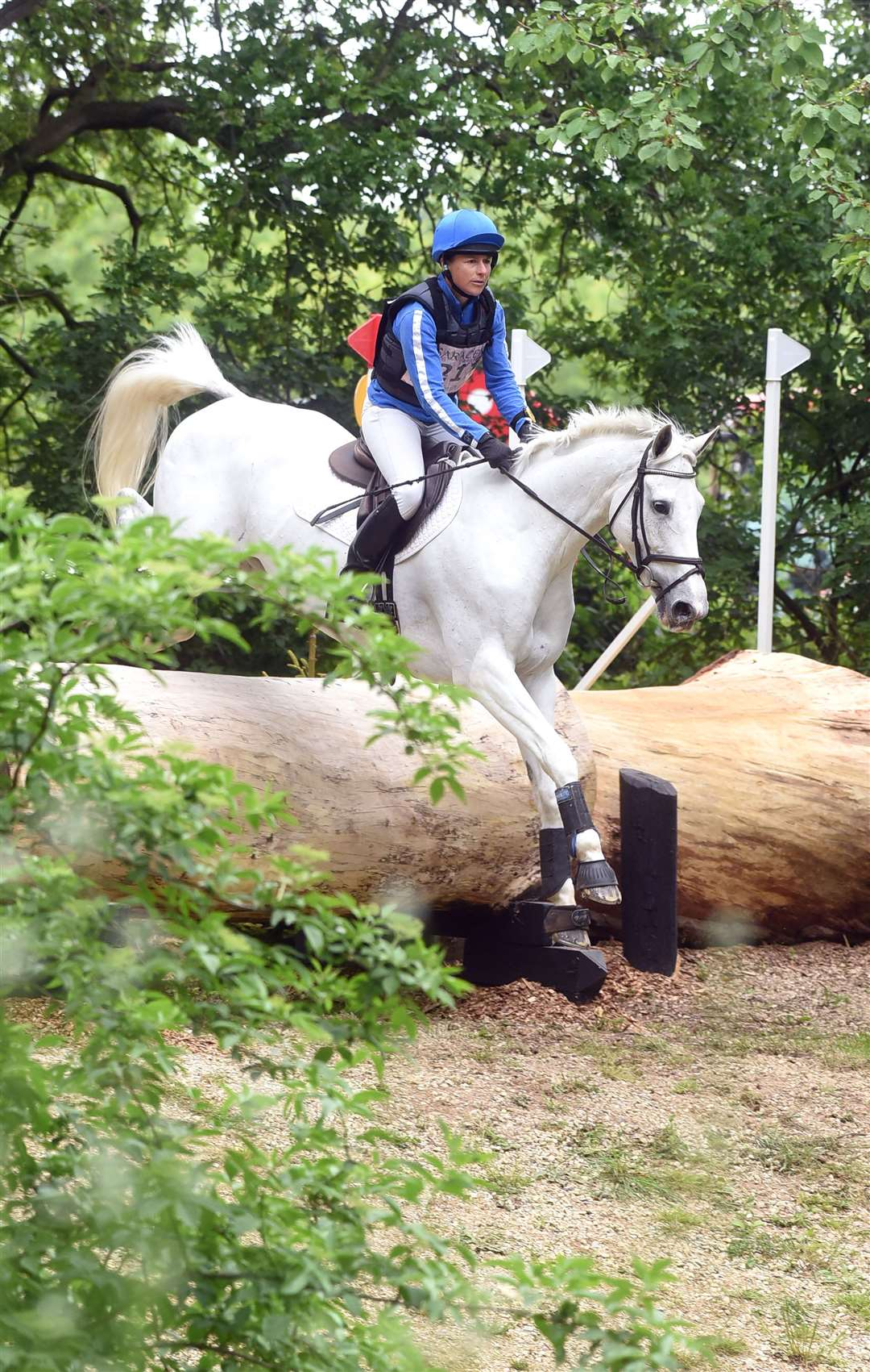 Houghton Horse Trials..Gordon Murphy BGS Star Attraction..... (11187907)