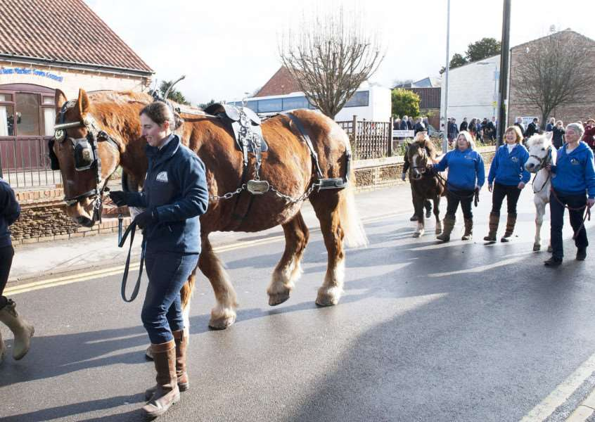 St Winnolds Parade in Downham Market.Pictured are staff and horses from Church Farm Rare Breeds Centre Stow Bardolph and West Norfolk Riding For The Disabled.