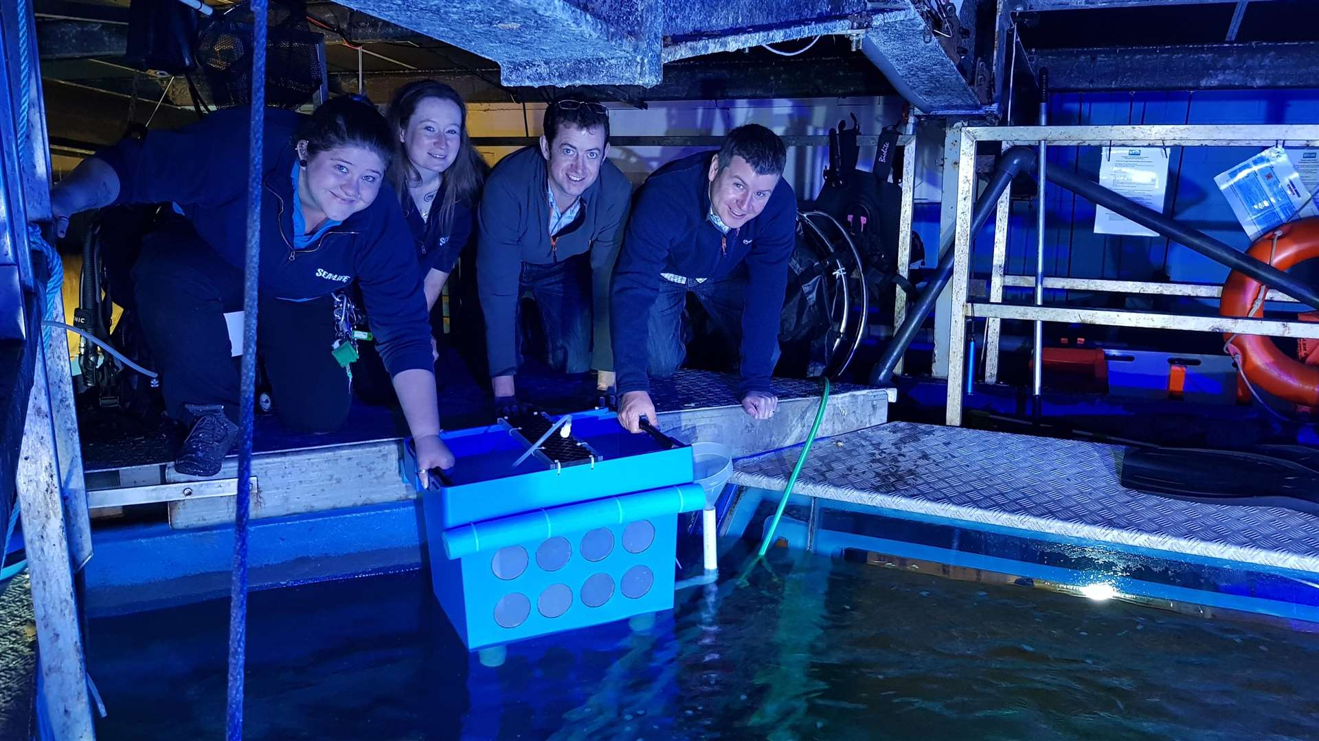 Hunstanton Sea Life Centre 'egg collections' to aid groundbreaking breeding project. From left, Sophie Bailey, Jemma McGuinness, Dr Nick Jones and Dr Tom Galley. Picture: SUBMITTED. (5828203)