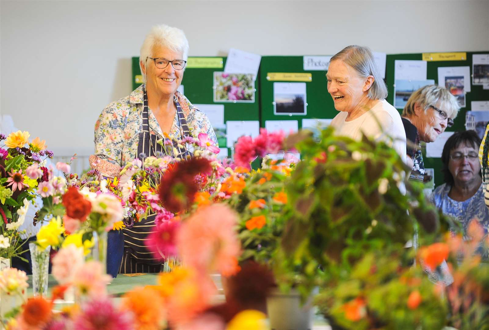 The Greenfingers Gardening Club annual horticultural show at Pott Row Village Hall.. (16251884)