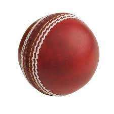 cricket ball (2906544)