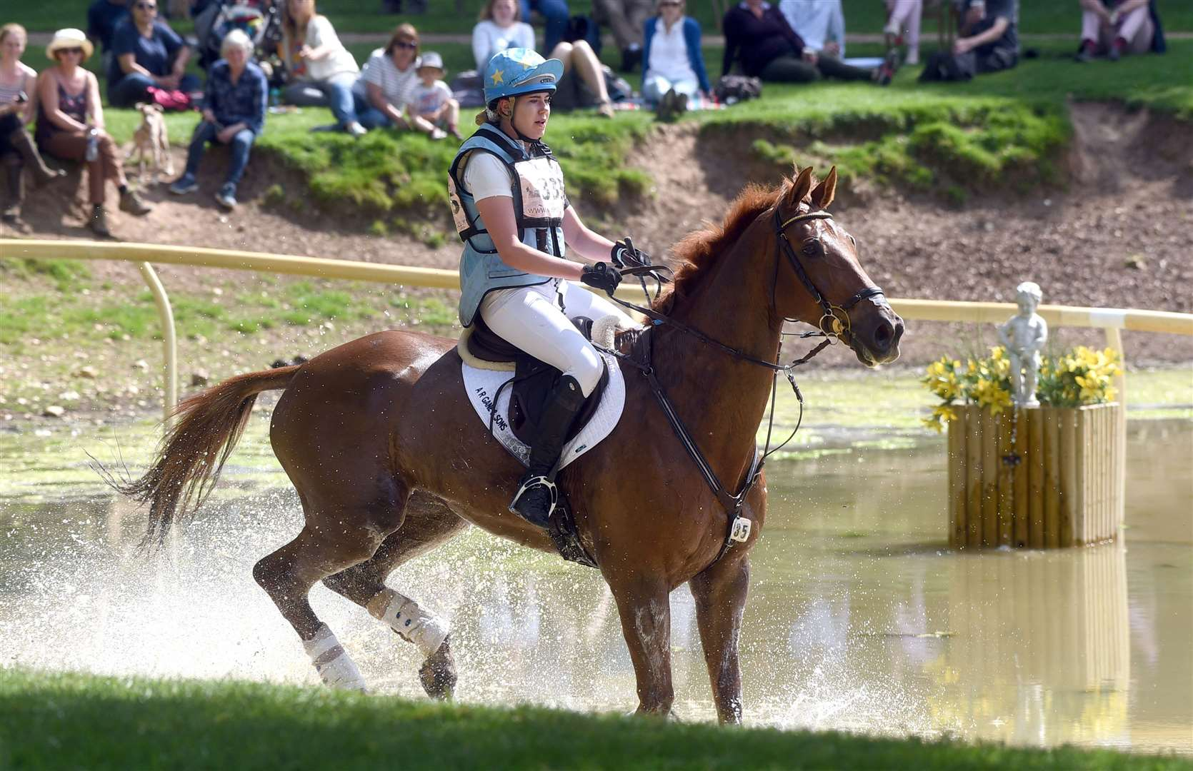 Houghton Horse Trials..Toots Bartlett riding Candyman Leanorth... (11187895)