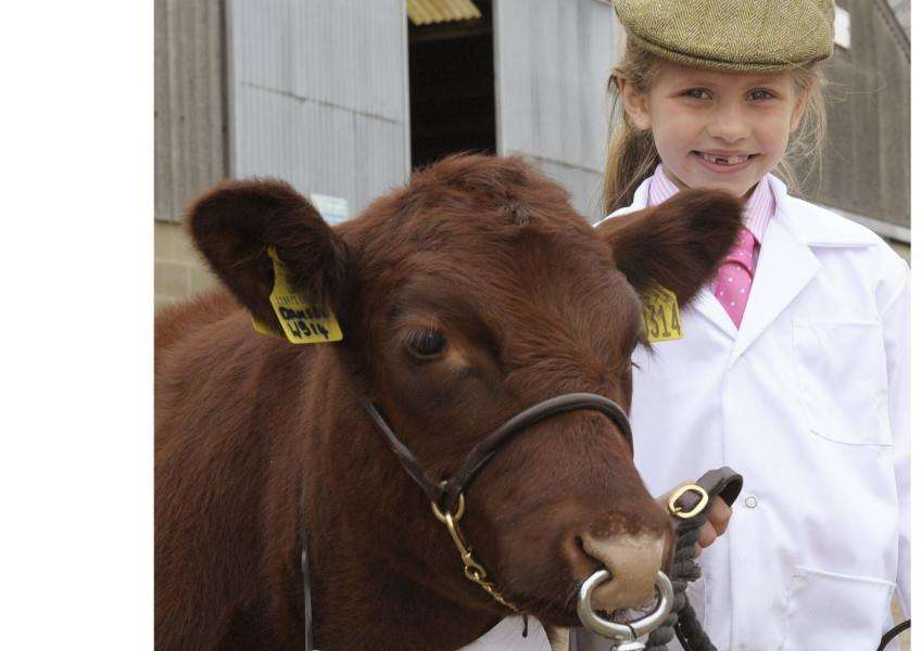 Scenes from The Royal Norfolk Show Norwich 2017 (Day 2 Thursday)'Grace Carter (7) with her Lincoln Red orphan calf Damsel.