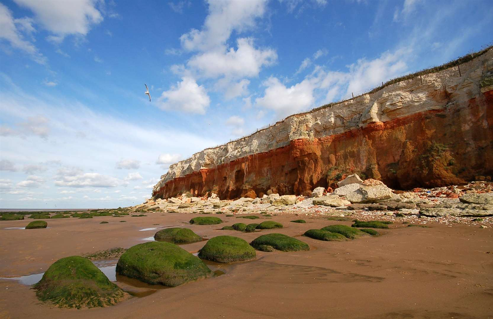 Council chiefs say they are encouraged by the government's response to the threat of coastal erosion