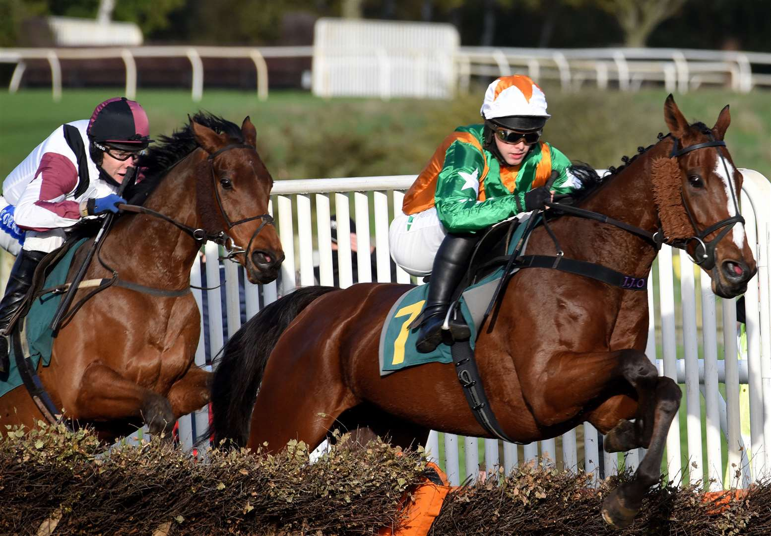 Racing Action at Fakenham Racecourse on Wednesday 28th October 2020..Action from Race No 4, winner No 7. (42906535)