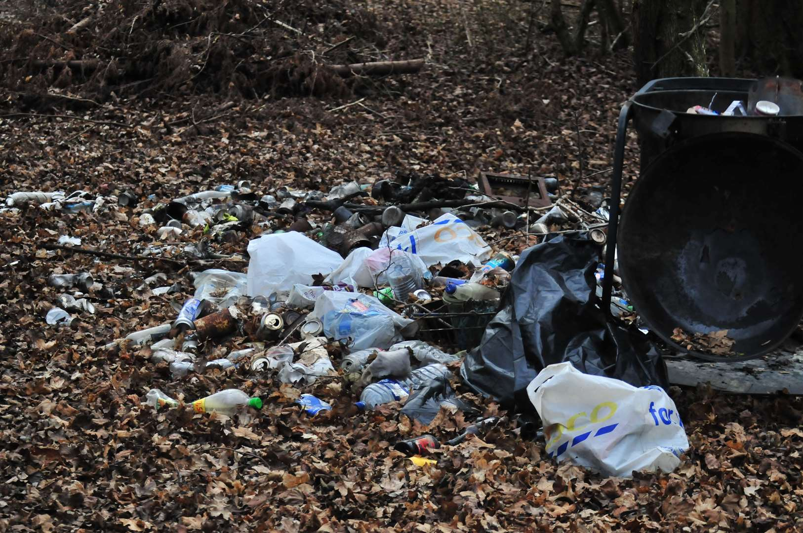 An environmental group will be hosting a family-friendly event to help fight litter in the town (8297202)