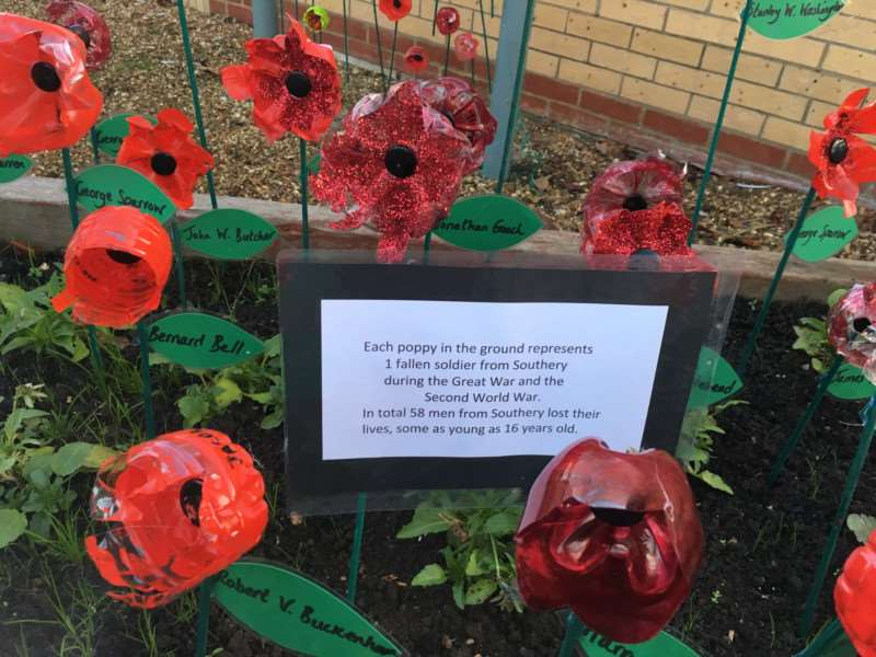 Poppies at Southery Academy ahead of Remembrance Day. Photo: SUBMITTED.