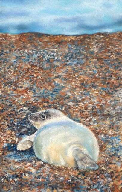 "Seal Pup"" by Izzy Wingham (14852008)"