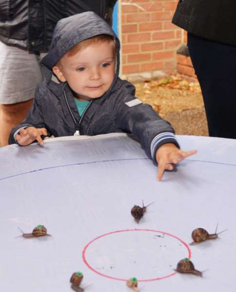 HEACHAM INFANT SCHOOL SUMMER FETE'Lewis Horsepool is an interested spectator during the snail-racing event