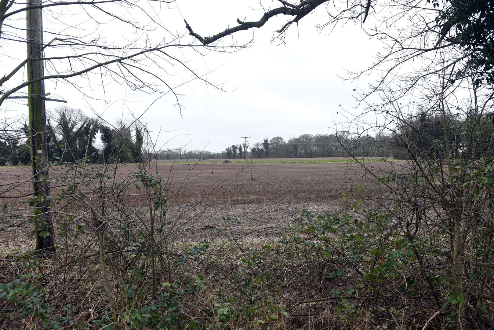 Plans to build a new school on this land in Gayton appear to have been abandoned after a proposal for a new site was submitted