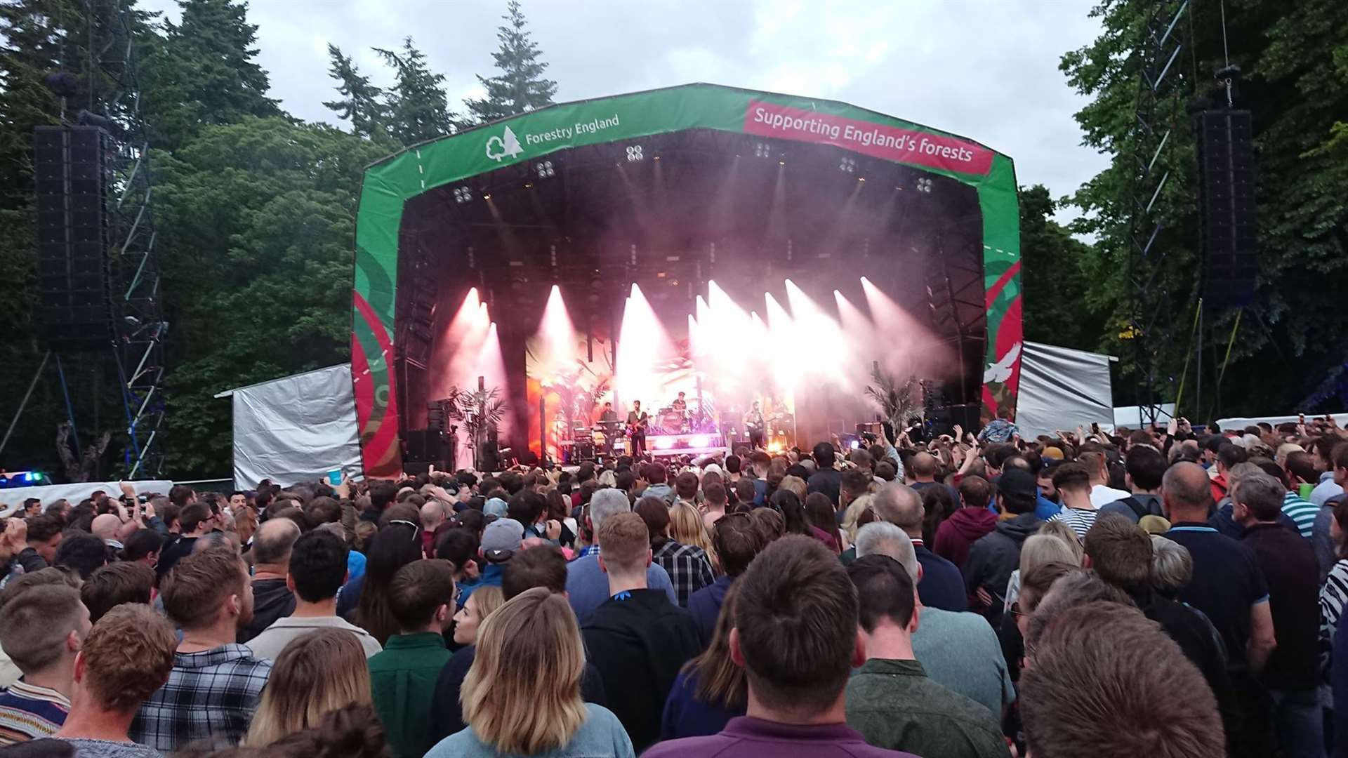 Foals at Thetford Forest, Thursday June 20, 2019