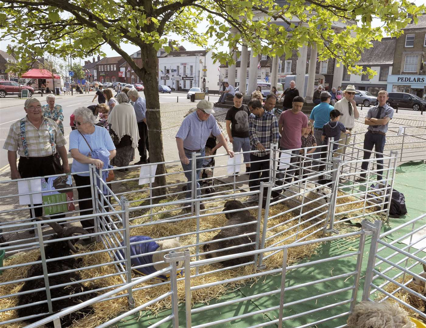 An Events, Tourism and Business Committee at Swaffham Town Council would continue to oversee events in the town like the Sheep Fair